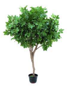 umělý strom nekvetoucí